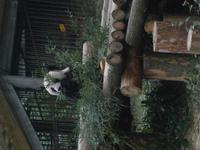 T Ren Essen reisebericht china rundreise glanzlichter im reich der mitte 15 10 30 10 2011