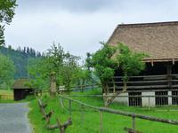 Schwarzwald singlereisen