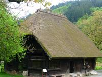 Singlereisen schwarzwald