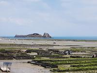 Cancale, Austernpark