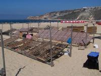 Trockenfisch in Nazarè