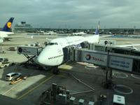 Flug Frankfurt Am Main