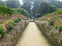 Sark - La Seigneurie Gardens