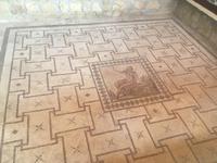 Bodenmosaiken Haus des Dionysos