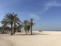 298 am Strand von Sharjah