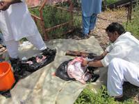 Ostküste der Emirate - Pakistanis beim kochen