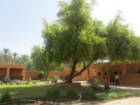 In Al Ain