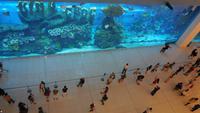 Dubai Mall - Rundreise Arabische Emirate
