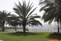 Sharjah (8)
