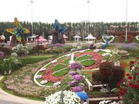 Dubai - Miracle Gardens