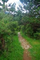 Wandern im Llogora Nationalpark