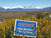 17 Tage Wanderreise Argentinien und Chile – Patagonien und Feuerland mit Buenos Aires – Nationalpark Los Glaciares mit El Chalten und Perito Moreno – Nationalpark Torres del Paine – Feuerland – Ushuaia (71)