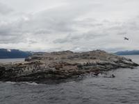 17 Tage Wanderreise Argentinien und Chile – Patagonien und Feuerland mit Buenos Aires – Nationalpark Los Glaciares mit El Chalten und Perito Moreno – Nationalpark Torres del Paine – Feuerland – Ushuaia (927)