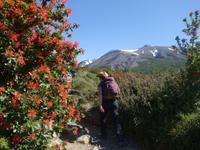 Wanderung Laguna y Base de las Torres in Torres del Paine - Patagonien (21)