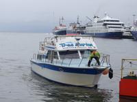 Bootsfahrt und Wanderung am Beagle Kanal - Ushuaia - Feuerland (15)