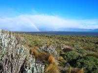 El Calafate: Lago Argentino