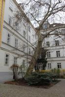 Stadtrundgang Wien