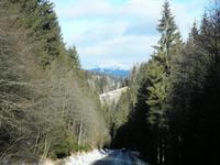 133 RÜckfahrt nach Bad St. Leonhard
