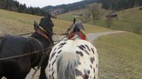 Eberhardt TRAVEL Winterreise in den Kitzbueheler Alpen/Brixental/Tirol - Pferdekutschfahrt in die Wildschoenau