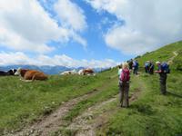 Wanderung zur Hochsonnbergalm