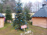 Auch blaue Kugeln hängen an Weihnachtsbäumen