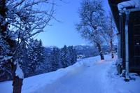 044 Abtenau, Abend in Abtenau mit Osterhorngruppe
