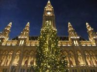 Christkindelmarkt am Rathaus