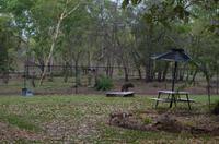 Kakadu-Nationalpark & Arnhemland-Safari