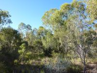 Im Alice Springs Desert Park
