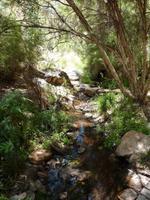 Grosse Australien Rundreise 2013 - Outback Northern Territory Dessert Park