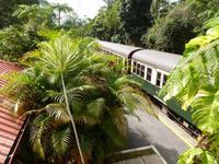 Grosse Australien Rundreise 2013 - Cairns Regenwald Queensland - Kuranda
