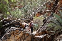 Western Macdonnell Ranges – Standley Chasm