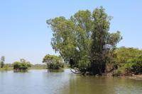 Kakadu-Nationalpark – Bootsfahrt auf dem Yellow Waters