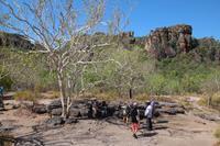 Kakadu-Nationalpark – Anbangbang Billabong