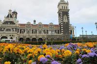 Stadtrundfahrt in Dunedin