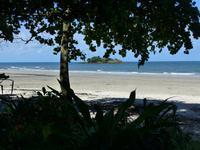 Blick aufs Meer im Daintree Nationalpark