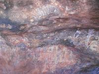 Outback - Spaziergänge am Uluru (Ayers Rock), Ureinwohner-Symbole