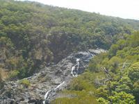 Fahrt mit der Regenwald-Skyrail nach Kuranda