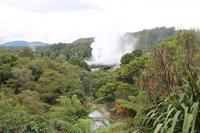 Besichtigung der Geysire von Rotorua
