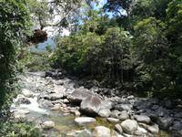 Daintree Nationalpark und Mossman Schlucht