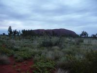 Outback - Sonnenaufgang am Uluru