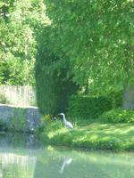 Annevoie-Garten