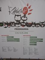 Ypern, Volksfest Katzenwerfen