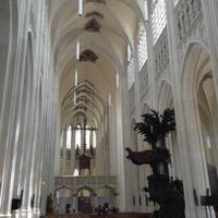 die Kathedrale Leuven