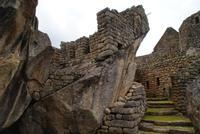 Machu Picchu (41)