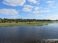 Bootsfahrt auf dem Chobe-River -