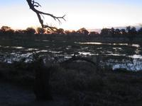Mababe Konsesion - Sonnenuntergang am Khwai River