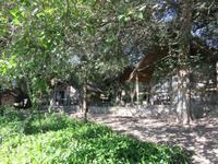 Thamalakane River Lodge -