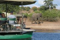 und Elefanten