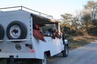 Ausflug ins Moremi Crossing